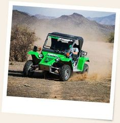 ATV Tours — drive your own safe, military grade off-road vehicle. An experienced local guide will tell you about Arizona wildlife, history and more! Green Zebra, Go Green, Adventure Activities, Family Adventure, Atv, Outdoor Power Equipment, Arizona, Wildlife, Tours