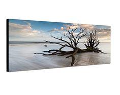 120x40cm Quadro su tela - pronto da appendere - montata su pannello in legno - Fotografia formato XXL - Stampa su tela - Quadro x poltrone salotto cucina bagno mobili ufficio casa