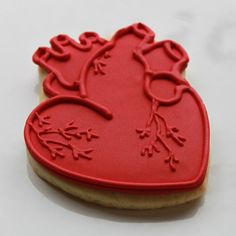 Anatomical Hearts Valentine Gift Box  4 Cookies by whippedbakeshop,