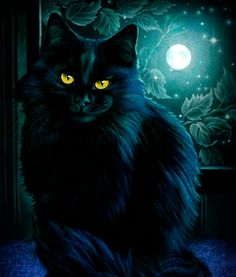 dreamies.de Halloween Friday The 13th, Halloween Cat, I Love Cats, Cute Cats, Kittens Cutest, Cats And Kittens, Gato Gif, Gifs, Black Cat Art