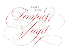 Rachel Yallop Calligraphy & Lettering