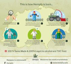 The founders of Hempfy, adepts of Cannabis tea for many years, thought products available from hemp plant were often bland and quite boring. Adventure Photos, Hemp Seeds, Cannabis, Farmer, Photo Galleries, Geneva Switzerland, Gallery, Infographics, Plants