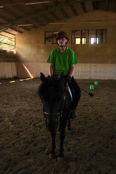 Pony, Horses, Animals, Green, Pony Horse, Animales, Animaux, Horse, Animal Memes