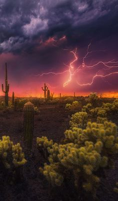 ***Desert Lightening Storm by Marc Adamus /500px (Arizona)