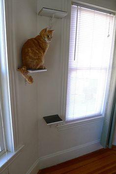 DIY cat perches | Foxflat's Blog