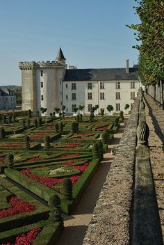 Villandry is my favorite castle from the region I came from - Loire valley love the gardens