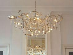 Delphinium, Brand Van Egmond! Spectacular!!!