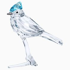Celebrate the beauty of nature with this cute Blue Jay, perched elegantly on a crystal branch. Expertly crafted in clear crystal with blue, gray, and black color accents, the curious and intelligent bird sparkles with 241 facets and was designed by Martin Zendron. Display with other nature-inspired pieces for added impact. A great gift for bird lovers. Decoration object. Not a toy. Not suitable for children under 15.Dimensions: 2 5/8 x 1 3/8 x 2 3/8 inches Color: white Swarovski Gifts, Swarovski Crystal Figurines, Swarovski Crystals, Blue Jay, James Jewelry, Accent Colors, Color Accents, Decorative Objects, Gift For Lover