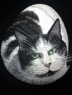 PAINTED ROCK /Custom Pet Portraits/Hand Painted Cat/Stones/