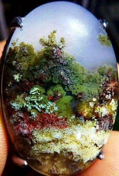 Just an amazing Plume agate from  Trenggalek- Indonesia  Visit Amazing Geologist for more..