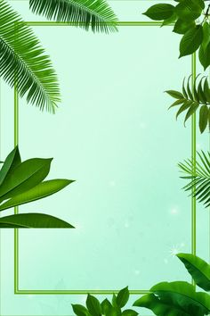 Beach Background Images, Bamboo Background, Old Paper Background, Poster Background Design, Frame Background, Tumblr Backgrounds, Photo Backgrounds, Wallpaper Backgrounds, Fruit Photography