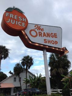 Marion County Florida, Ocala National Forest, Ocala Florida, Visit Florida, Journey, Neon Signs, Memories, History, Beach