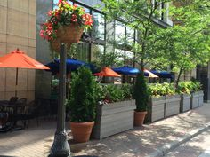 The Patio is now open at Pazzaluna! Dine outside in the heart of beautiful St. Paul, Minnesota.