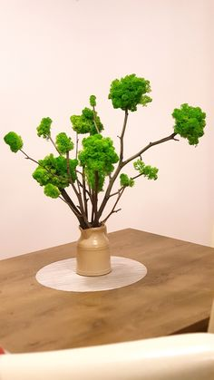 Moss Art, Interior Plants, Cute Diys, Spring, Handmade, Flowers, Indoor Plants, Hand Made, Indoor House Plants