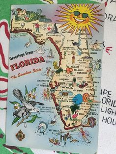 Vintage Florida postcard 1960s chrome sunshine by 3floridagirls