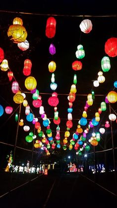 Spokane Chinese Lantern Festival in Pictures – Tammilee Tips