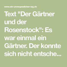 """Text """"Der Gärtner und der Rosenstock"""": Es war einmal ein Gärtner. Der konnte sich nicht entscheiden, ob er die Frau, die er liebte, nun heiraten sollte..."""