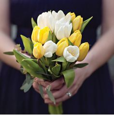 8 Stem Tulips Bouquet