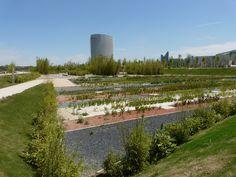 Parque del Agua con la llegada de la primavera en Zaragoza, mi ciudad nos brinda todo su esplendor.