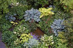 Shade Garden | Flickr - Photo Sharing!