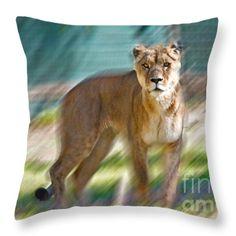 Lioness Throw Pillow by Miroslava Jurcik