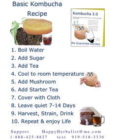 Kombucha Brewing Guide – Explore How to Fermentation Online Kombucha Benefits, Kombucha Scoby, How To Brew Kombucha, Kombucha Recipe, Making Kombucha, Kombucha Brewing, Kombucha Mushroom, Mushroom Culture, Kombucha Starter
