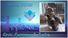 Some epic & funny fail moments from across the globe. * Please submit your clips to our e-mail & have a chance to be featured in a future video with credit t. Future Videos, Animal Antics, Funny Fails, This Is Us, Animals, Fictional Characters, Instagram, Nature, Animales