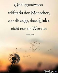 SoulMe repräsentiert keine reine Dating-App, sond… Oh Love, What Is Love, Love You, Couple Quotes, Love Quotes, German Quotes, Good Notes, True Words, New Friends