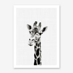 Giraffe Portrait Print by Vivid Atelier