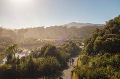 Für jeden Wanderer ist etwas dabei / Wandern in Neuseeland