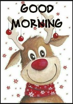 Good morning sister have a wonderful day 🌙 * ☁☁ 🌟 * * * 🌟 👋🎅 🚶🎄 🏡 ⛪🏫🎄 🎁💝 Good Morning Sister, Good Morning Quotes For Him, Good Morning Picture, Good Morning Good Night, Morning Pictures, Good Morning Images, Christmas Animals, Christmas Quotes, Christmas Pictures