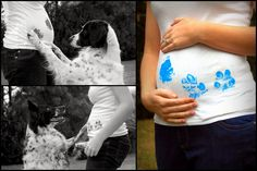 Gender reveal now, baby present later.  Adorable maternity photo ideas with your dog! #pregnancy #announcement #photography