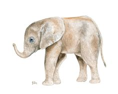 Animal Watercolor Painting Elephant van jamesriverstudios op Etsy