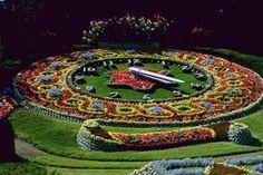 Flowerbeds #516018