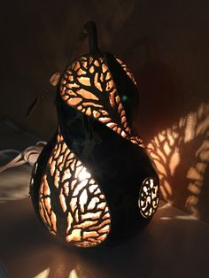 Bird nest gourd lit