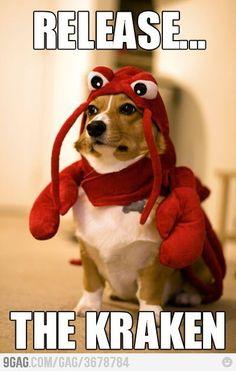 Release The Kraken! #funnypets #dogs