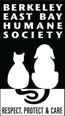 Berkeley East Bay Humane Society - Foster an animal, come be a canine friend with me, drop off any supplies you can, this org is awesome!