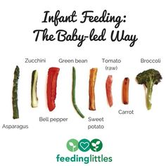 Feeding Littles ( Baby Led Weaning First Foods, Weaning Foods, Baby First Foods, Baby Weaning, Weaning Toddler, Introduce Solids To Baby, Solids For Baby, Toddler Finger Foods, Baby Finger