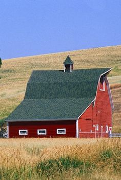 Barn sitting in the fields of the flat lands