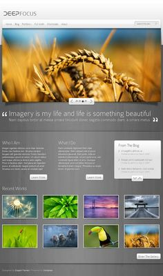 Now you can turn your WordPress blog into a fully functional online photo gallery while still maintaining all of the features of a normal blog. Along with the gallery layout, DeepFocus comes with a robust blog and CMS-style homepage as well, making it an amazing solution for artists/photographers looking to build an online presence.