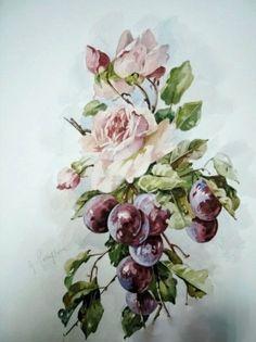 Watercolor Technique Watercolor Pictures, Watercolor Flowers, Watercolor Paintings, Watercolours, Watercolour Tutorials, Fruit Art, Vintage Roses, Catherine Klein, Flower Art
