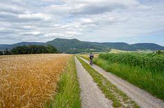 Bikepacking Trans Germany (BTG) - BIKEPACKING.com