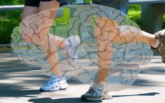 Un nuovo studio rileva che l'esercizio fisico migliora la memoria o studio è stato condotto dal professore di neuroscienze cognitive Dr. Guillen Fernandez presso la R memoria cervello sport
