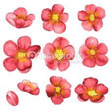 꽃 일러스트에 대한 이미지 검색결과