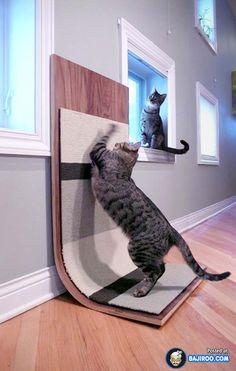 Creative cat furniture