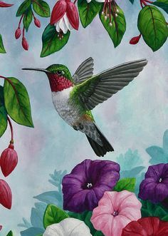 Birds Painting - Hummingbird Greeting Card 1 by Crista Forest Pretty Birds, Beautiful Birds, Crafts Beautiful, Painting & Drawing, Watercolor Paintings, Hummingbird Painting, Forest Art, Bird Drawings, Canvas Art