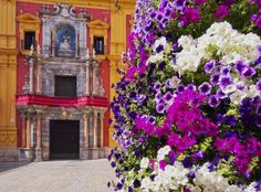 $2290 Glories of Spain & Portugal Example 8 Day Cruise aboard Panorama I The colorful streets of Spain