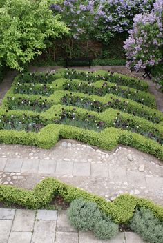 Kjeld Slot - LOve the use of traditional boxwood hedging in a contemporary repeating pattern down a slope filled with purple and white tulips... gets me thinking about spring.