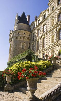 Steps to Chateau de Brissac,Loire Valley,France