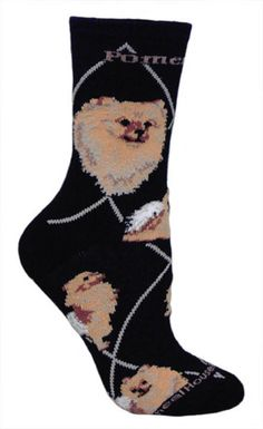 Pomeranian Socks...why don't i own a pair of these yet??!!